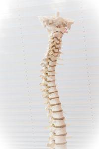 Rückenschmerzen durch Mangel an Training